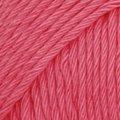 06 rosado intenso