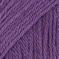 11 violeta